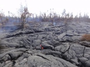 Lava above Pahoa town, January 2015