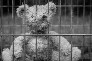 incarcerated-teddy